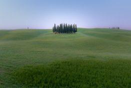 Roland Seichter Fotografie - Cipressi di San Quirico 1