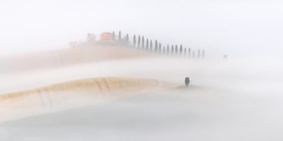 Roland Seichter Fotografie - Toscana Nella Nebbia 3