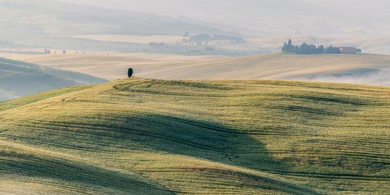 Roland Seichter Fotografie - Toscana Nella Nebbia 7