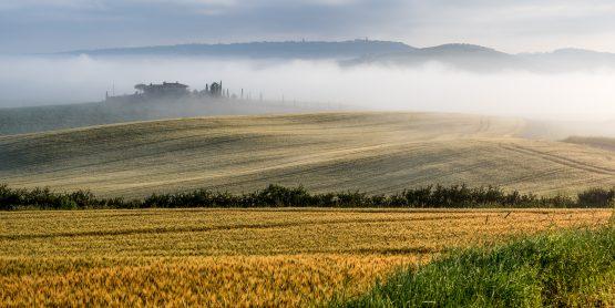 Roland Seichter Fotografie - Toscana Nella Nebbia 8